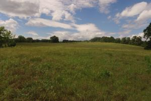 Mountain Creek Agricultural and Hunting Land - Anderson County SC