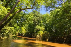 Riverfront Recreational Retreat - Kershaw County SC