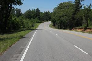 Hwy 17 Timber Investment  - Lamar County AL