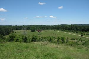 Longview Preserve Hunting and Recreation