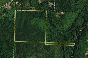 Ranch Road Hunting Opportunity - Marion County AL