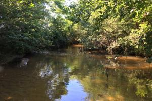 Greenville Pastureland Homesite with Creeks - Greenville County SC
