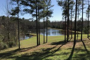 Sand Rd. Hunting and Fishing Game Day Retreat - Tuscaloosa County AL