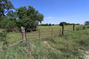 Lawrence Cattle and Country Homesites