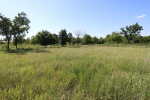 Lawrence Country Homesite & Acreage