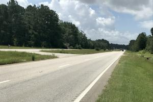 Highway 43 Shepard House Road Tract - Mobile County AL