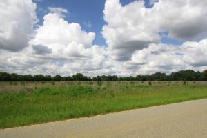 Stewart 5.5 Acre Farmland / Homesite
