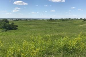 Sarpy County Acreage Lot # 1 - Sarpy County NE