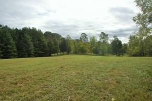 Lenoir City Residential Acreage - Loudon County TN