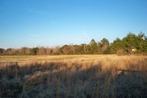 The Bellingrath Gardens Road Mobile Tract - Mobile County AL