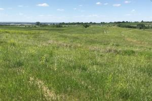 Land for sale in Sarpy County Nebraksa. View of the Northwest corner. (2 of 5)