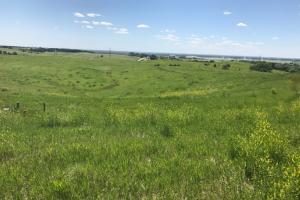 Land For Sale in Sarpy County Nebraska. Overview of the subject property.  (3 of 6)