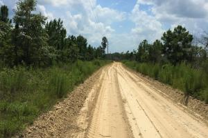 Red Oak South Hunting & Timber Investment - Barnwell County SC