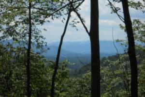 High Mountain Views and Hunting - Mitchell County NC