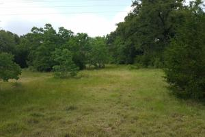 60 acre Recreational/Commercial Acreage in Waller, TX (7 of 15)