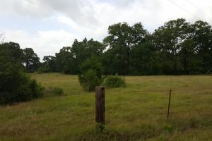 60 acre Recreational/Commercial Acreage in Waller, TX (12 of 15)