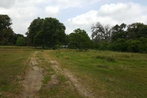 60 acre Recreational/Commercial Acreage in Waller, TX (13 of 15)