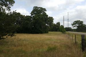 60 acre Recreational/Commercial Acreage in Waller, TX (15 of 15)