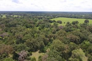 60 acre Recreational/Commercial Acreage in Waller, TX (3 of 15)