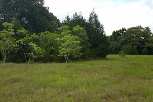 60 acre Recreational/Commercial Acreage in Waller, TX (6 of 15)