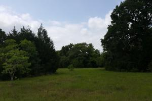60 acre Recreational/Commercial Acreage in Waller, TX (10 of 15)
