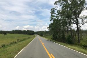 Long paved road frontage. #GeorgiaLandForSale (4 of 31)