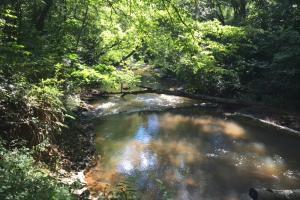 Secluded Homesite with Creek - Pickens County SC