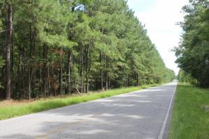 Ridgeville 72 Acres - Berkeley County SC
