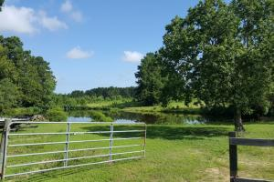 Livingston Acreage and Homesite - Polk County TX