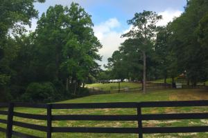 Camden Equestrian Opportunity - Kershaw County SC