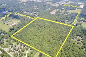 Semmes Woods Pollard Road Tract - Mobile County AL