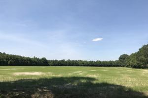 Cape Fear River Homesite Pastureland