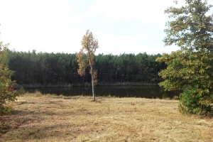 Private Recreational Estate with Pond - Fairfield County SC