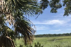 Fripp Point Road Marsh/Waterfront Parcel