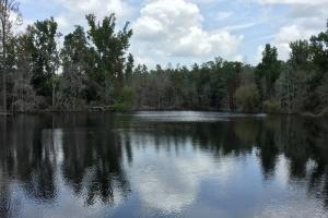 Carolina Hunting Estate with Pond - Aiken County SC