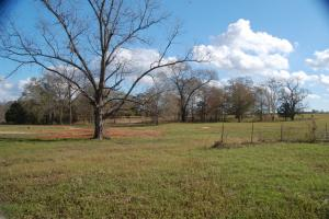 107 Acre Farm and Recreation Property - Schley County GA