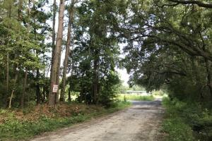Old Polowana Road Small Parcel - Beaufort County SC