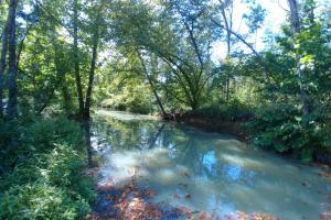 103+/- Acres Completely Surrounded by Mt. Magazine WMA - Yell County AR