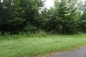 Sandy Fork Road Homesite Parcel 1 - Hale County AL
