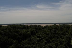 1,110 Acres Bottomland Hardwoods on the Mississippi River in Phillips, AR (6 of 76)