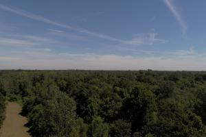 1,110 Acres Bottomland Hardwoods on the Mississippi River in Phillips, AR (7 of 76)