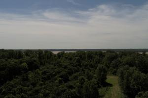 1,110 Acres Bottomland Hardwoods on the Mississippi River in Phillips, AR (19 of 76)
