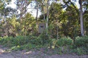 1,110 Acres Bottomland Hardwoods on the Mississippi River in Phillips, AR (21 of 76)