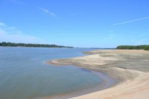 1,110 Acres Bottomland Hardwoods on the Mississippi River in Phillips, AR (28 of 76)