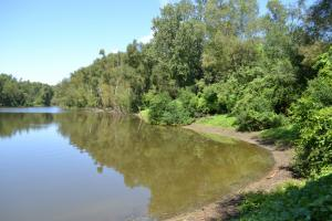 1,110 Acres Bottomland Hardwoods on the Mississippi River in Phillips, AR (39 of 76)