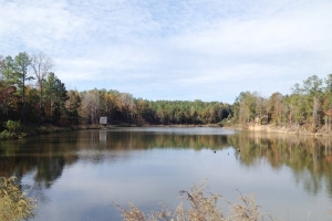 Premier Fishing, Hunting & Timber Tract - Chilton County AL