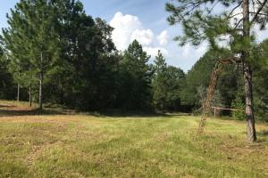 Laurens County Private 'Living off the Land' Home & Property in Laurens, GA (26 of 58)