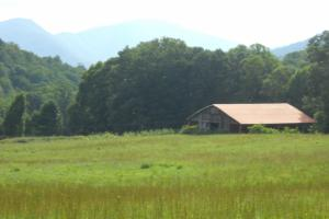 Spectacular Farmland Adjacent to NC Game Lands - Mitchell County NC