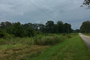 Greenville Homesite & Timber Investment - Butler County AL