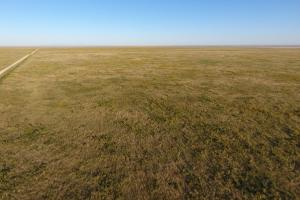 Pasture Land For Sale - Otero County in Otero, CO (6 of 12)